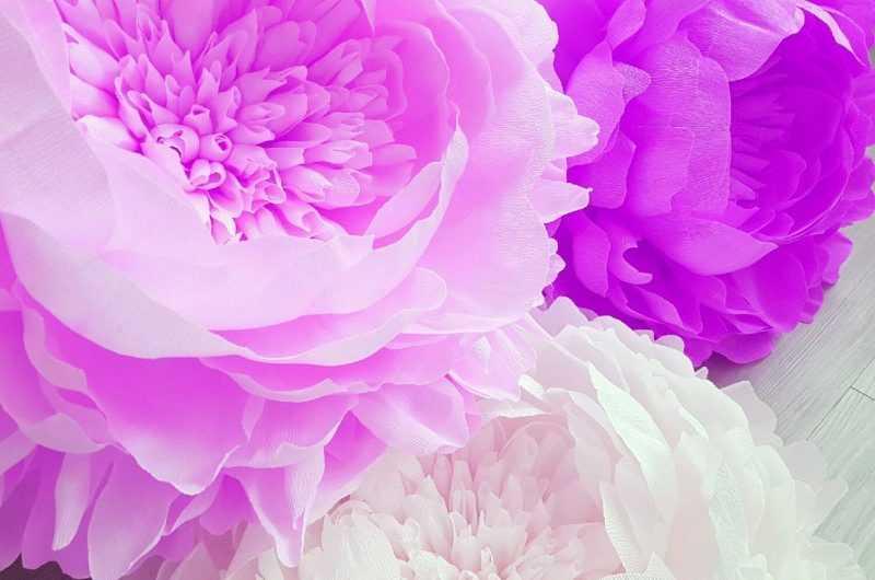 Цветы из гофрированной бумаги: ТОП-100 фото готовых вариантов + инструкции, как изготовить своими руками