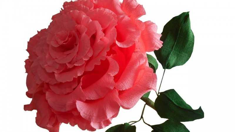 kak sdelat rozu iz bumagi 201