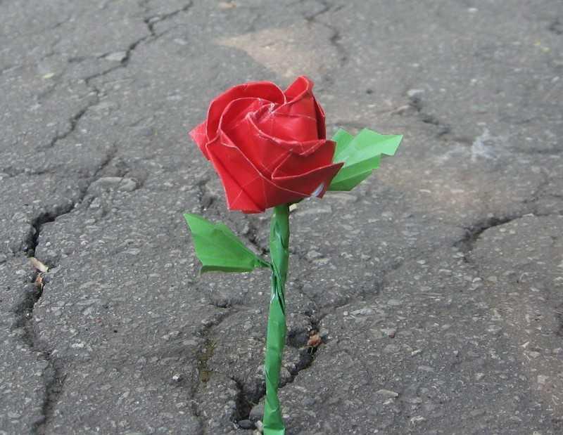 kak sdelat rozu iz bumagi 9
